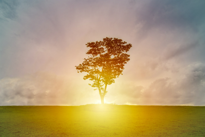 Mindfulness and millenials