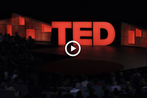Ted video blog