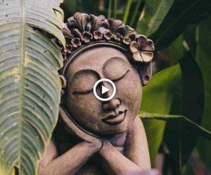 Zen garden flute - mindfulness muziek