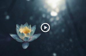 mindfulness muziek - Devi Prayer